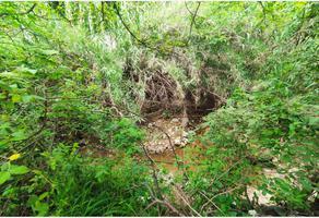 Foto de terreno habitacional en venta en 5 de mayo 40, agencia municipal de san felipe del agua 0, san felipe del agua 1, oaxaca de juárez, oaxaca, 0 No. 01