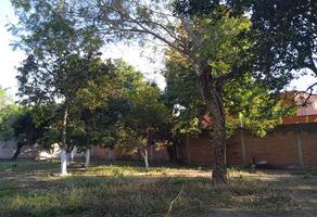 Foto de terreno habitacional en venta en 5 de mayo 5, itzamatitlán, yautepec, morelos, 18612239 No. 01