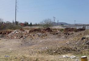 Foto de terreno habitacional en venta en 5 de mayo , atequiza estacion, ixtlahuacán de los membrillos, jalisco, 3295688 No. 04