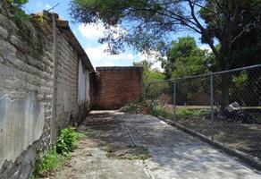 Foto de terreno habitacional en venta en 5 de mayo , itzamatitlán, yautepec, morelos, 0 No. 01