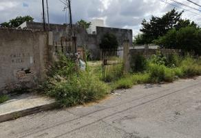 Foto de terreno habitacional en venta en 5 , juan b sosa, mérida, yucatán, 0 No. 01