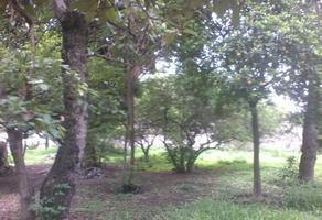 Foto de terreno comercial en venta en 5 mayo , itzamatitlán, yautepec, morelos, 0 No. 01