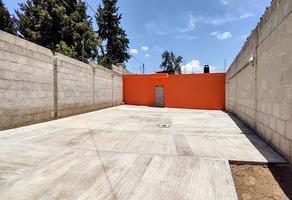 Foto de terreno habitacional en venta en 5 , nopalucan de la granja, nopalucan, puebla, 0 No. 01