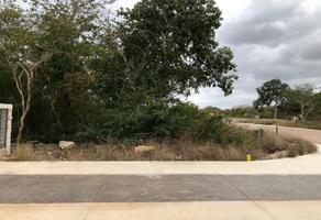 Foto de terreno habitacional en venta en 5 , yucatan, mérida, yucatán, 0 No. 01