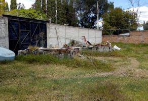 Foto de terreno habitacional en venta en Buenavista, Ixtlahuacán de los Membrillos, Jalisco, 12732320,  no 01