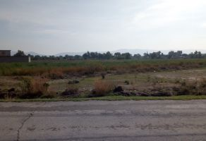 Foto de terreno habitacional en venta en Progreso de Juárez, Acatzingo, Puebla, 19988413,  no 01