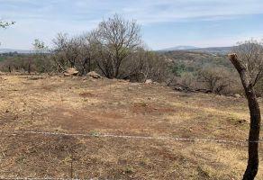 Foto de terreno habitacional en venta en Los Laureles, El Salto, Jalisco, 15139026,  no 01