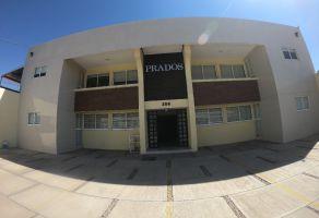 Foto de departamento en renta en Prados del Sur, Aguascalientes, Aguascalientes, 22044517,  no 01