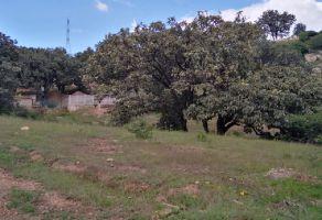 Foto de terreno habitacional en venta en La Magdalena, Zapopan, Jalisco, 11367456,  no 01