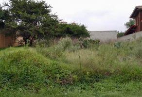 Foto de terreno habitacional en venta en Presa Escondida, Tepeji del Río de Ocampo, Hidalgo, 10255307,  no 01