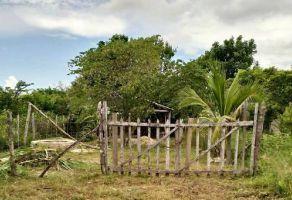 Foto de terreno habitacional en venta en Palizada Centro, Palizada, Campeche, 15126135,  no 01