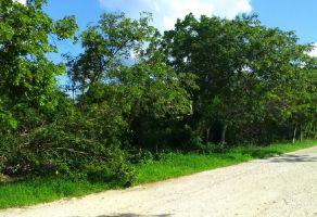 Foto de terreno comercial en venta en Izamal, Izamal, Yucatán, 17721572,  no 01