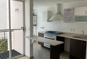 Foto de departamento en renta en Los Alpes, Álvaro Obregón, DF / CDMX, 15418132,  no 01