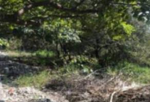 Foto de terreno habitacional en venta en Lomas de Jiutepec, Jiutepec, Morelos, 13385651,  no 01