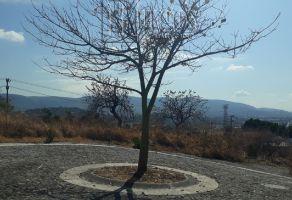 Foto de terreno habitacional en venta en Brisas, Temixco, Morelos, 5782671,  no 01
