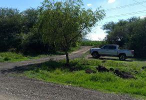Foto de terreno industrial en venta en El Sáuz Bajo, Pedro Escobedo, Querétaro, 10256111,  no 01