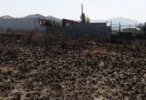 Foto de terreno habitacional en venta en San Pablo Ahuatempa, Santa Isabel Cholula, Puebla, 9643131,  no 01