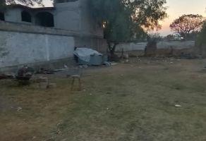 Foto de terreno habitacional en venta y renta en Los Reyes Acatlixhuayan, Temamatla, México, 20532285,  no 01