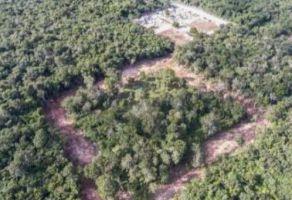 Foto de terreno habitacional en venta en Bacalar, Bacalar, Quintana Roo, 20742866,  no 01