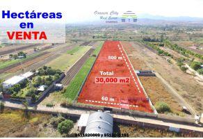 Foto de terreno comercial en venta en San Lorenzo Cacaotepec, San Lorenzo Cacaotepec, Oaxaca, 9680262,  no 01