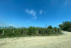 Foto de terreno habitacional en venta en 5km del centro , centro sección, allende, nuevo león, 0 No. 01