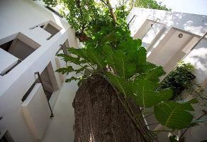 Foto de edificio en venta en 5ta avenida , playa del carmen centro, solidaridad, quintana roo, 14157569 No. 01