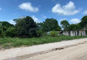 Foto de terreno habitacional en venta en 6 , bacalar, bacalar, quintana roo, 0 No. 01