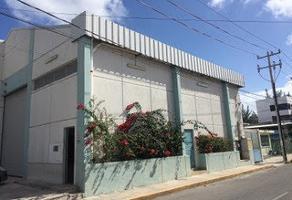 Foto de bodega en venta en 6 , supermanzana 64, benito juárez, quintana roo, 11451609 No. 01