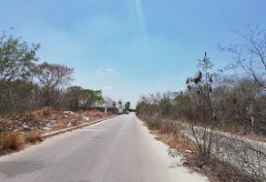 Foto de terreno habitacional en venta en  , 60 norte, mérida, yucatán, 13947756 No. 01