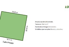 Foto de terreno habitacional en venta en  , del norte, mérida, yucatán, 14158661 No. 01