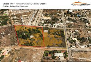 Foto de terreno habitacional en venta en 61 328, el roble agrícola, mérida, yucatán, 11619348 No. 01