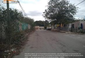 Foto de terreno habitacional en venta en 61 328, el roble agrícola, mérida, yucatán, 0 No. 01