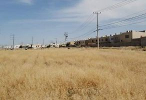 Foto de terreno habitacional en venta en Jardines de San Carlos Etapas 1 y 2, Juárez, Chihuahua, 15120657,  no 01