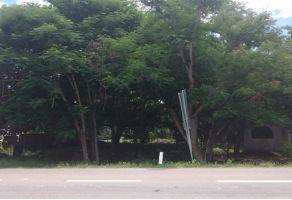 Foto de terreno comercial en venta en Diego Rojas, Bacalar, Quintana Roo, 16385651,  no 01