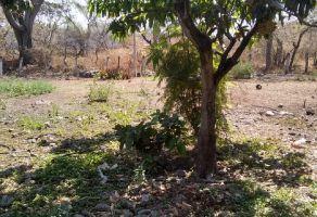 Foto de terreno habitacional en venta en San Isidro, Yautepec, Morelos, 15285307,  no 01