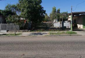 Foto de terreno habitacional en venta en Estrella, La Paz, Baja California Sur, 14802514,  no 01