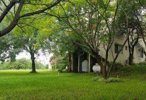 Foto de rancho en venta en El Fraile, Montemorelos, Nuevo León, 6137206,  no 01