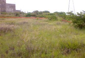Foto de terreno habitacional en venta en San Andres Huayapam, San Andrés Huayápam, Oaxaca, 14822058,  no 01