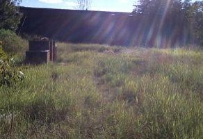 Foto de terreno habitacional en venta en Ixtlahuacan de los Membrillos, Ixtlahuacán de los Membrillos, Jalisco, 6764379,  no 01