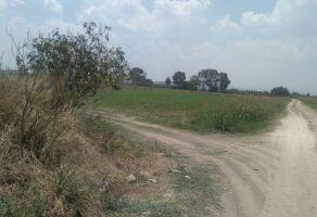 Foto de terreno comercial en venta en Viborillas, Colón, Querétaro, 20634657,  no 01