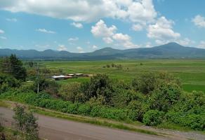 Foto de terreno habitacional en venta en Arocutin, Erongarícuaro, Michoacán de Ocampo, 17040858,  no 01