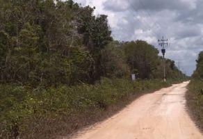 Foto de terreno habitacional en venta en José María Morelos, José María Morelos, Quintana Roo, 9366113,  no 01