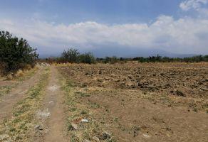 Foto de terreno habitacional en venta en Axocopan, Atlixco, Puebla, 21745539,  no 01