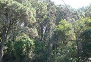 Foto de terreno comercial en venta en Huitzilac, Huitzilac, Morelos, 13746200,  no 01