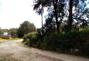 Foto de terreno habitacional en venta en San Dionisio Yauhquemehcan, Yauhquemehcan, Tlaxcala, 10425284,  no 01