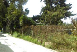 Foto de terreno habitacional en venta en Tlalpizahuac, Ixtapaluca, México, 6074004,  no 01