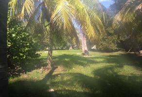 Foto de terreno comercial en venta en 7 b 359, santa gertrudis copo, mérida, yucatán, 11918684 No. 01