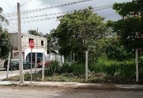 Foto de terreno habitacional en venta en 70 norte , playa del carmen centro, solidaridad, quintana roo, 0 No. 01