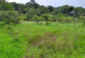 Foto de terreno habitacional en venta en Avándaro, Valle de Bravo, México, 16200393,  no 01
