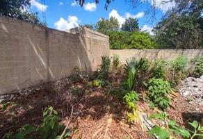 Foto de terreno habitacional en venta en 75 , merida centro, mérida, yucatán, 0 No. 01